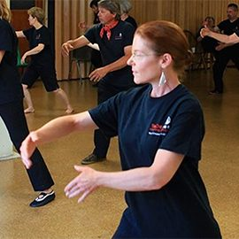 CLASSES – Tai Chi and Qi Gong with Fang